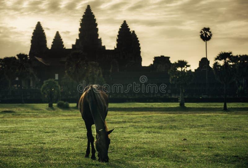 Davanti al Angkor Wat immagine stock libera da diritti