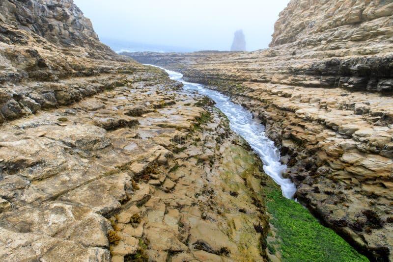 Davenport spricka i mulen sommar arkivfoton