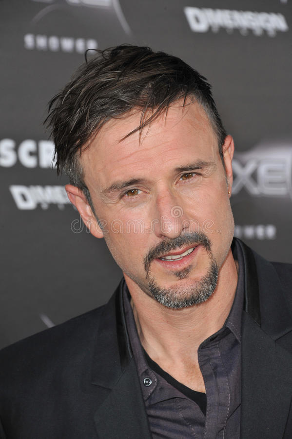 David Arquette royalty free stock images