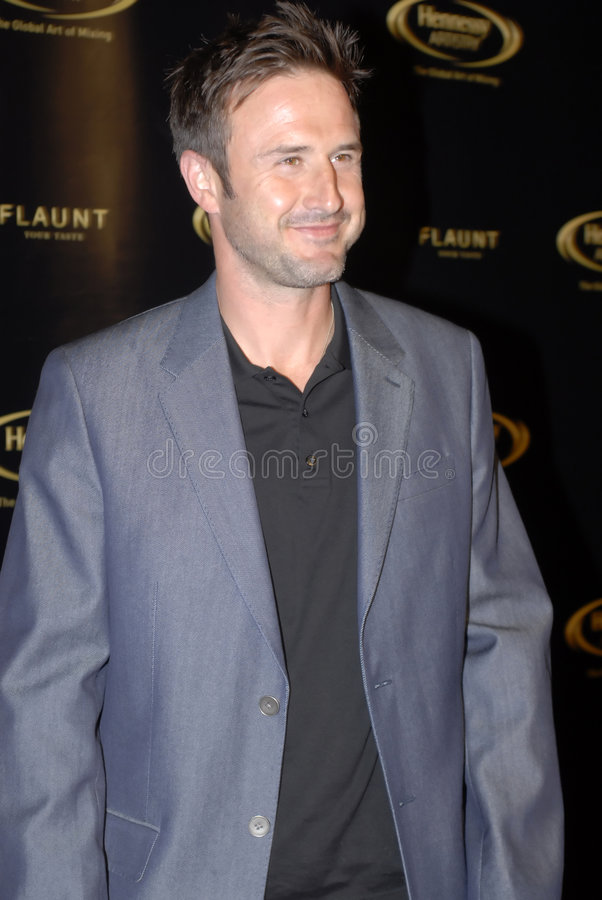 David Arquette on the red carpet. royalty free stock images