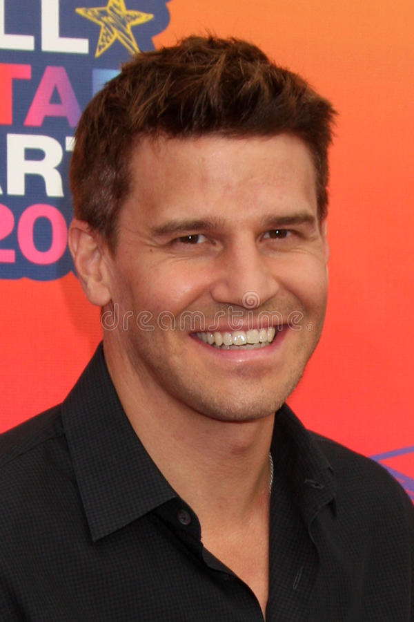 Download David Boreanaz editorial photography. Image of party - 26911182