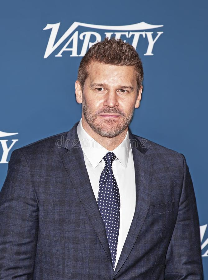 David Boreanaz at Variety 3rd Annual Salute to Service Event stock photo