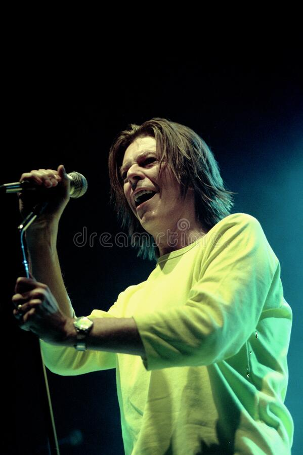 Free David Bowie During The Concert Stock Image - 185497391