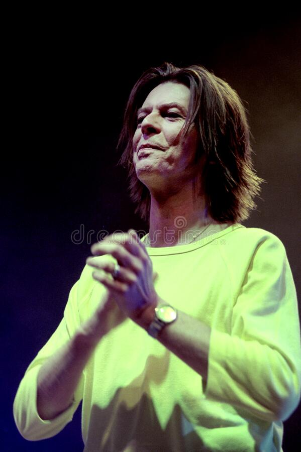 Free David Bowie During The Concert Stock Photography - 185497542