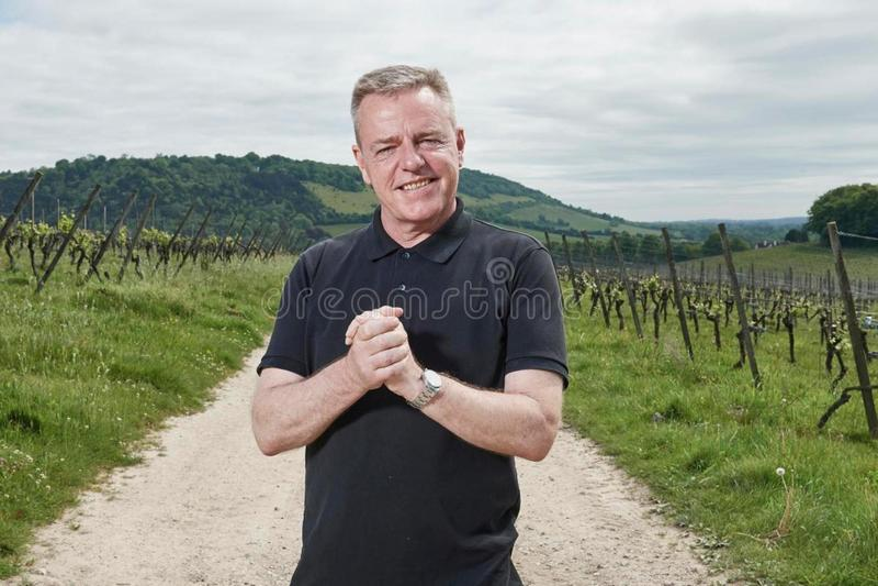 david bowie royalty free stock photo