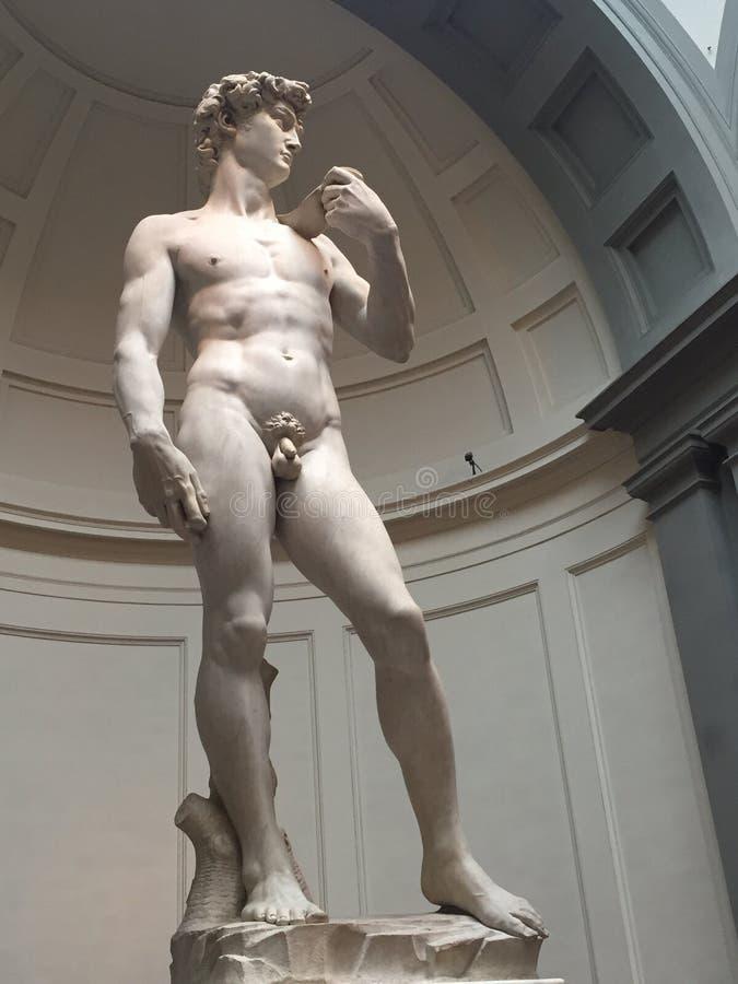 David de Michelangelo imagens de stock