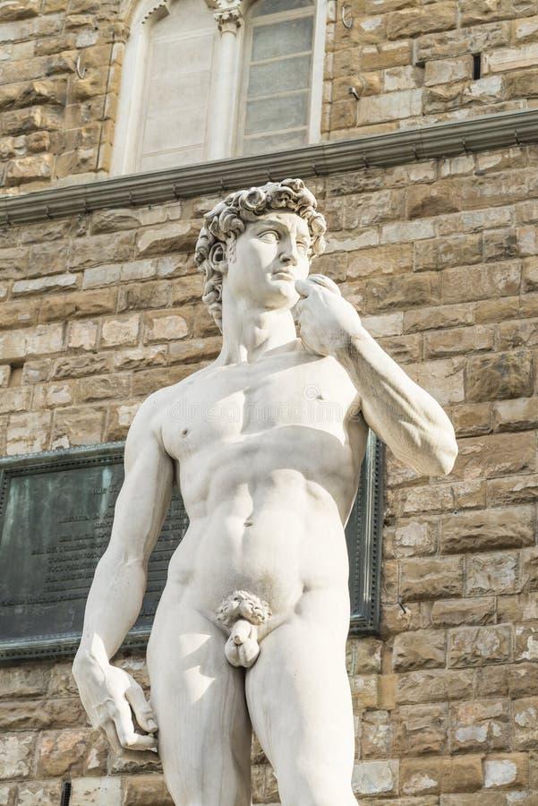 Download David Di Michelangelo, Firenze Immagine Stock - Immagine di firenze, fotografia: 117975921