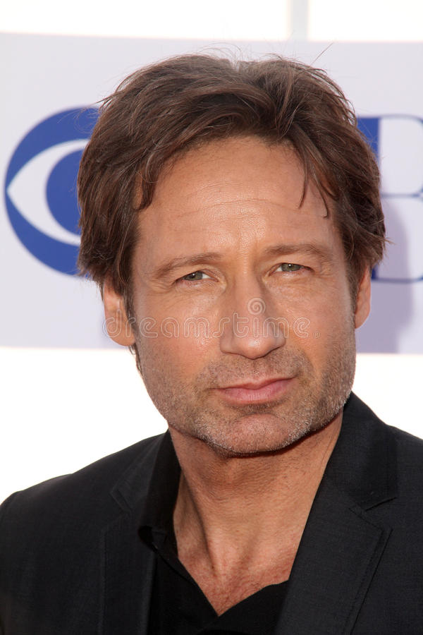 David Duchovny images stock