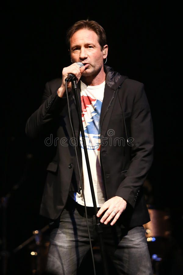David Duchovny. Performs in concert at the Paramount on February 23, 2017 in Huntington, New York royalty free stock image
