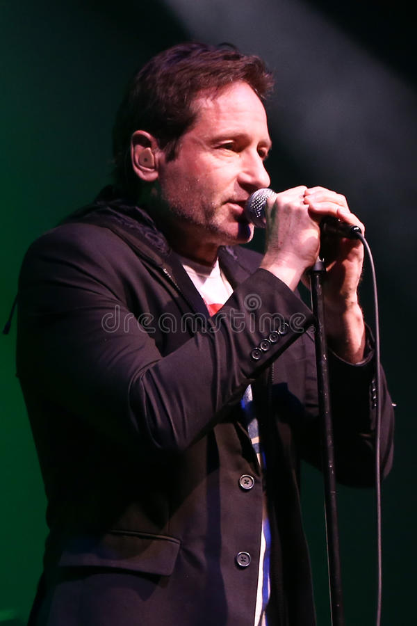 David Duchovny. Performs in concert at the Paramount on February 23, 2017 in Huntington, New York royalty free stock photography