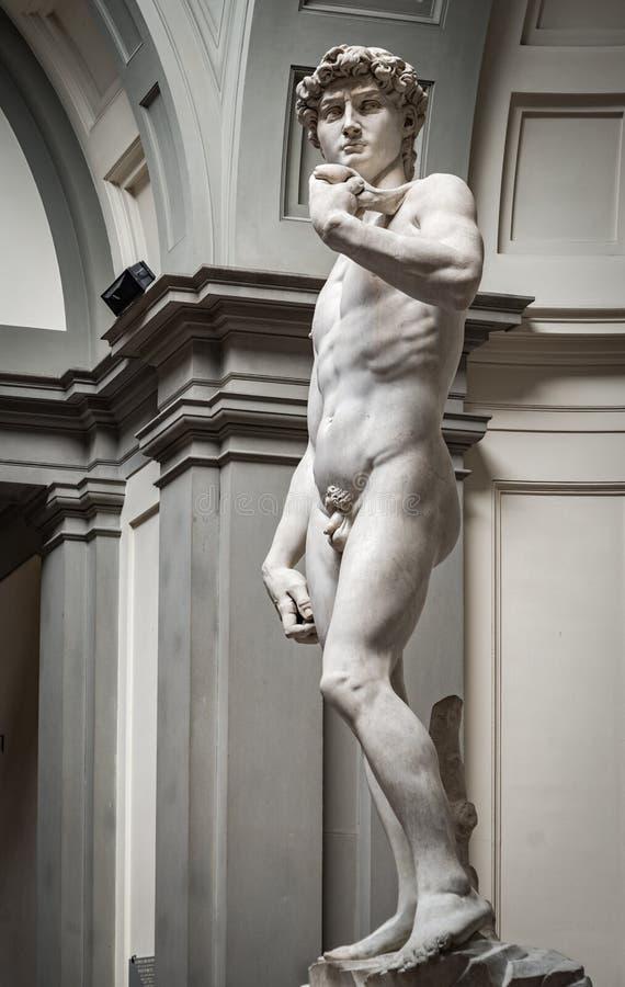 David - Florença - Italie foto de stock