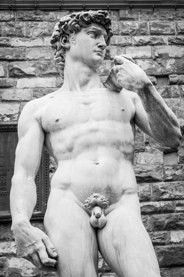 Download David stock photo. Image of sculpture, muscular, david - 39506946