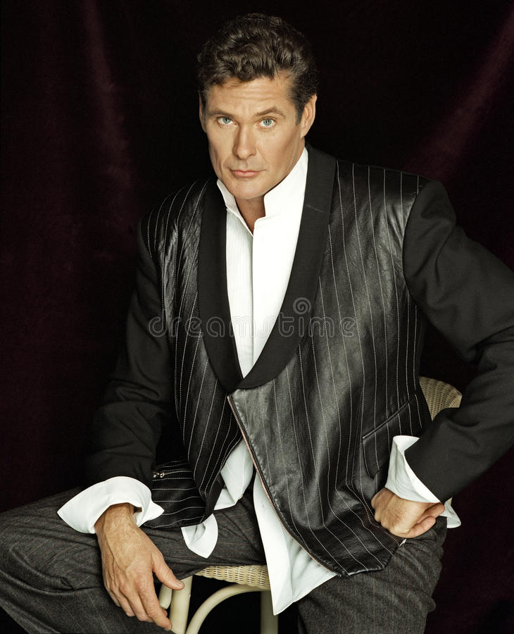 David Hasselhoff royalty free stock image