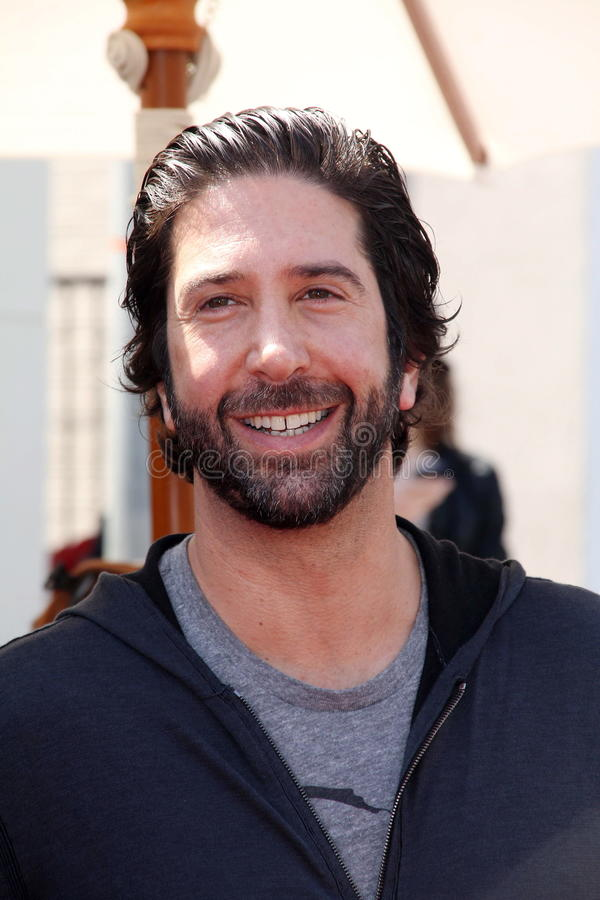 David Schwimmer stock foto