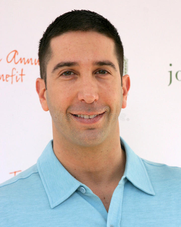 David Schwimmer royalty free stock photography