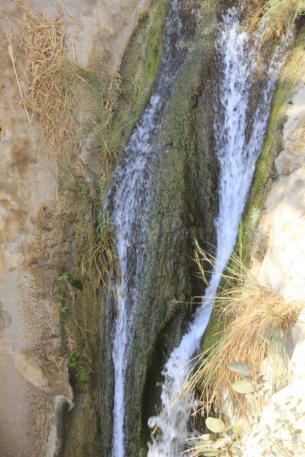 David Stream Water Fall in Ein Gedi, Judea-Woestijn in het Heilige Land, Israël stock afbeelding