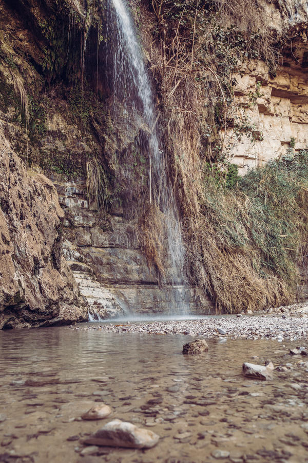 David Waterfall En Gedi Israel royalty-vrije stock foto's