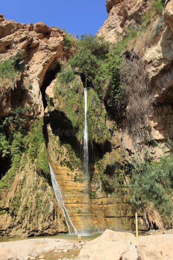 David Waterfall im Naturreservat Ein Gedi stockbilder
