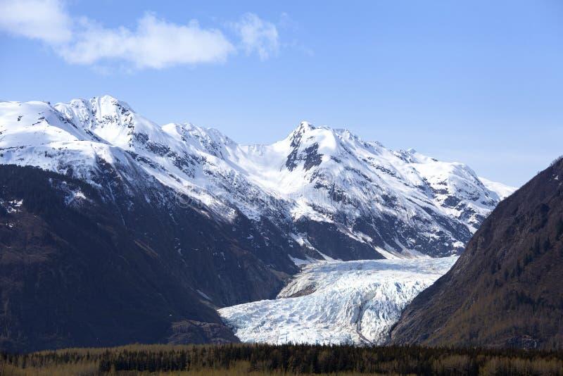 Davidson Glacier royaltyfri fotografi