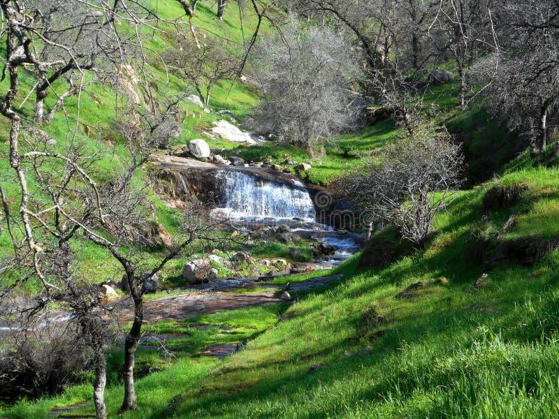 Davis Creek Waterfall imagens de stock