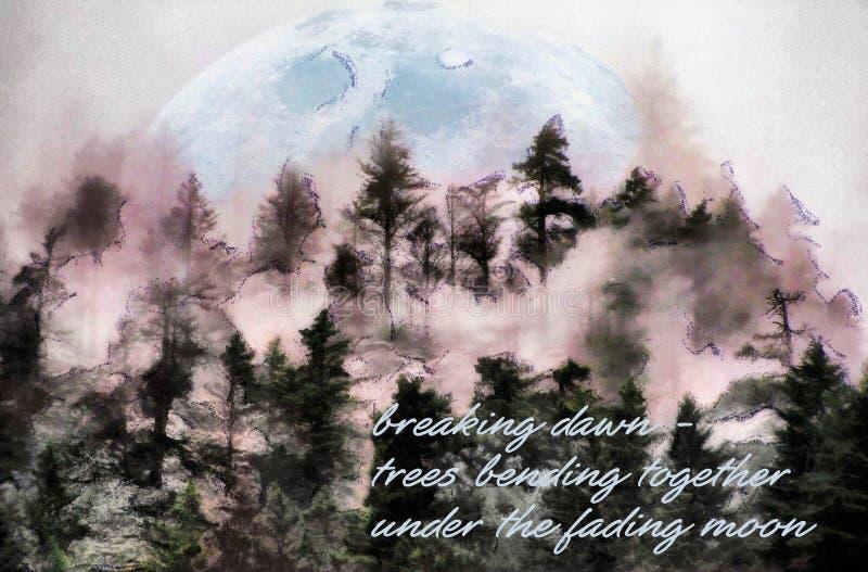 Dawn στα δάση στοκ εικόνες με δικαίωμα ελεύθερης χρήσης
