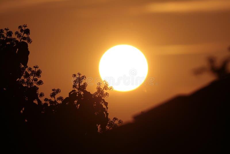 Download Dawn stock photo. Image of sunshine, heaven, dawn, faith - 11188914