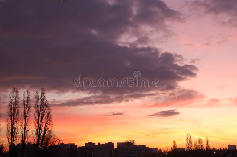 Dawn stock photography
