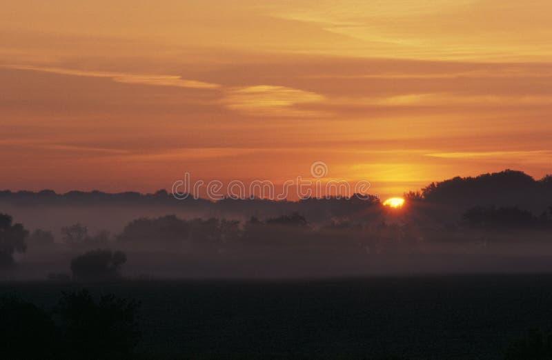 dawn fotografia stock