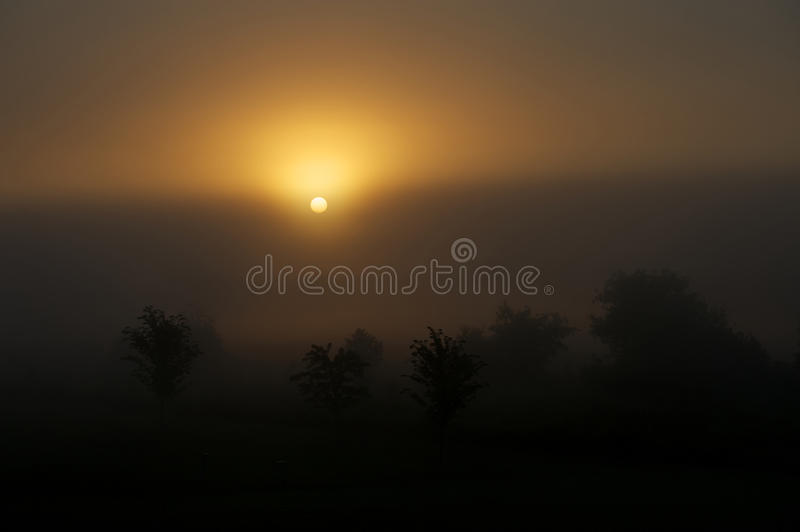 Dawn royalty free stock images