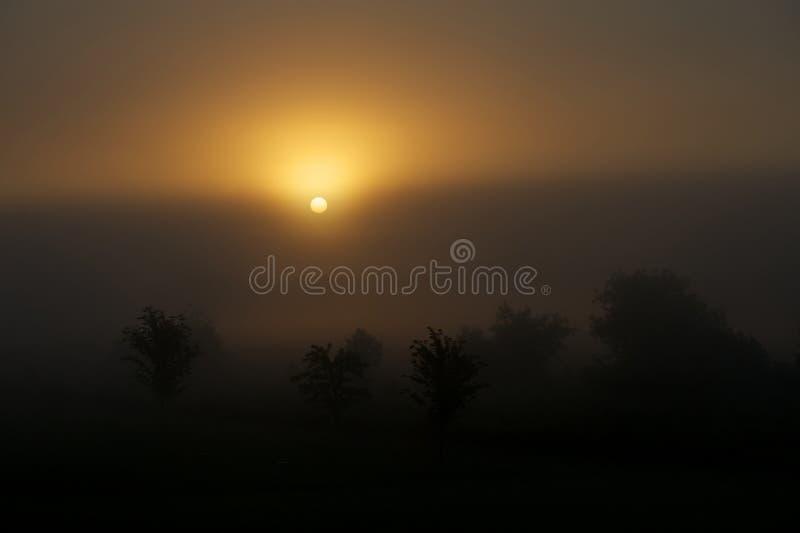 Dawn royalty-vrije stock afbeeldingen