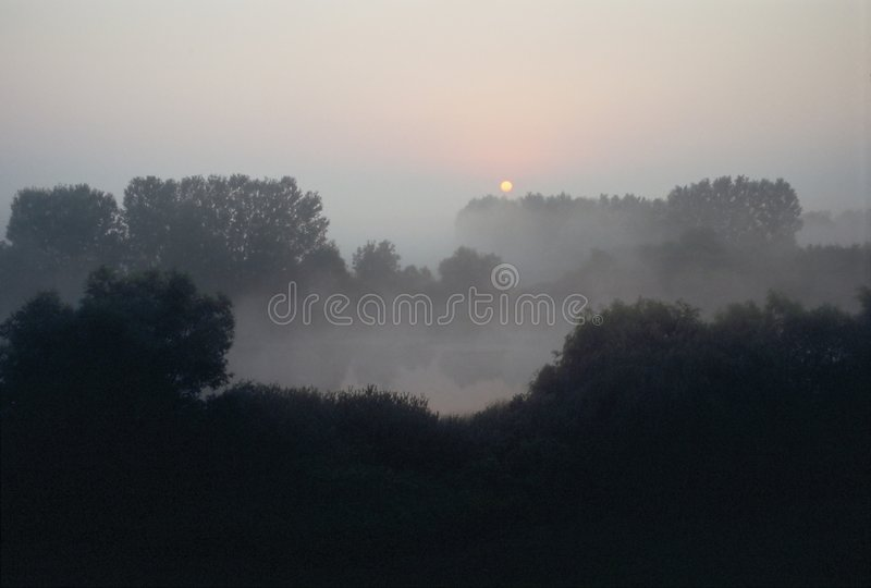 Dawn royalty free stock image