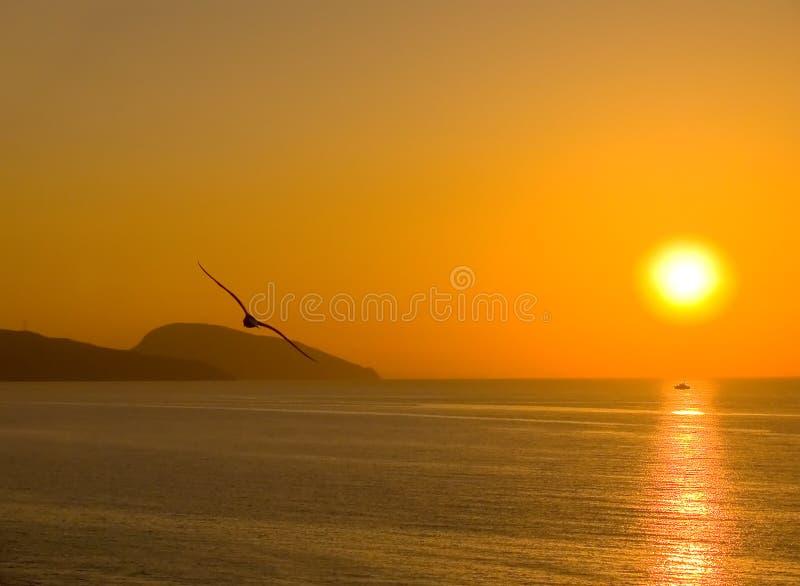 Dawn boven het overzees royalty-vrije stock afbeeldingen
