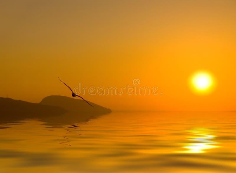 Dawn boven het overzees royalty-vrije illustratie