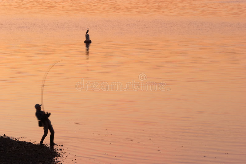 Dawn Catch royalty free stock photography