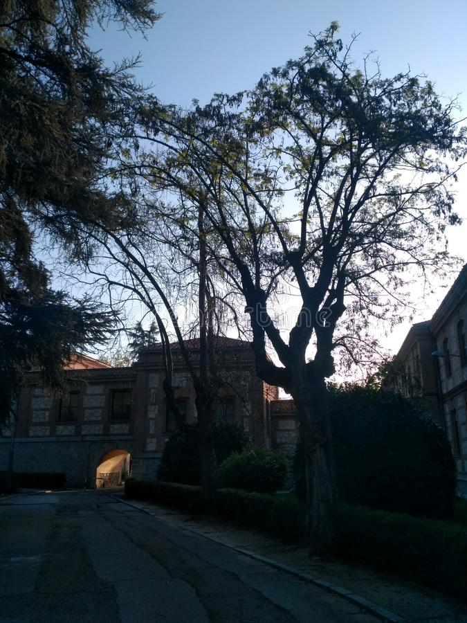 Dawn at Colegio San Fernando royalty free stock photos