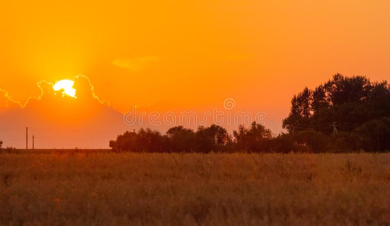 Dawn, dawning, daybreak, daylight, aurora, break of day. Dawn wheat field royalty free stock photography