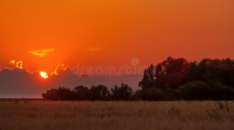 Dawn, dawning, daybreak, daylight, aurora, break of day. Dawn wheat field royalty free stock images