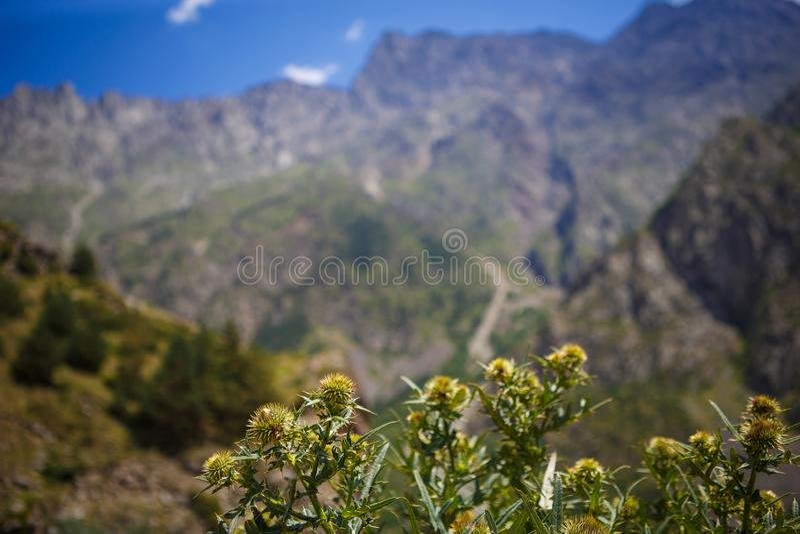 Dawn in de bergen van Georgi? De koude van de zon stock fotografie