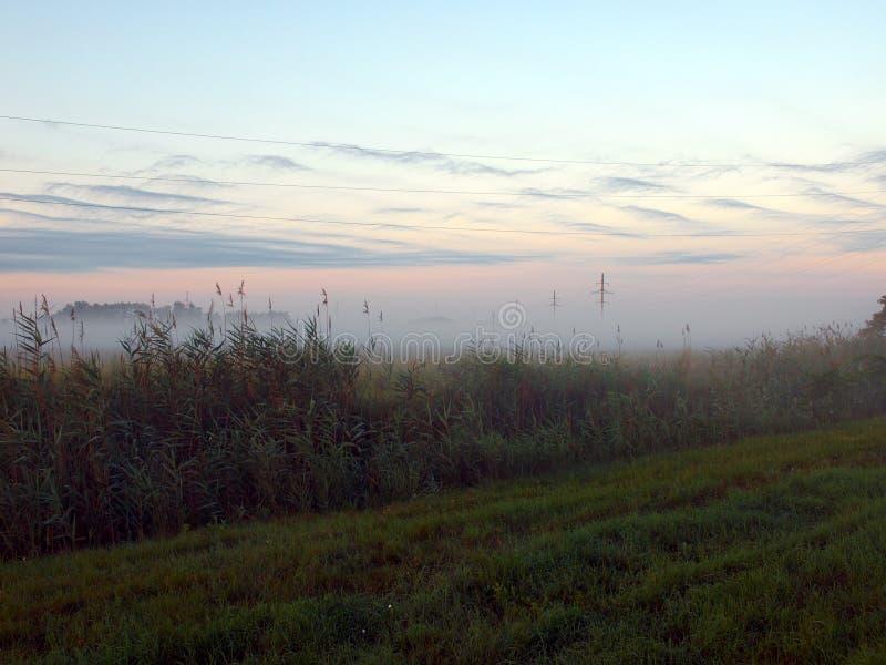 Dawn in de mist stock foto's