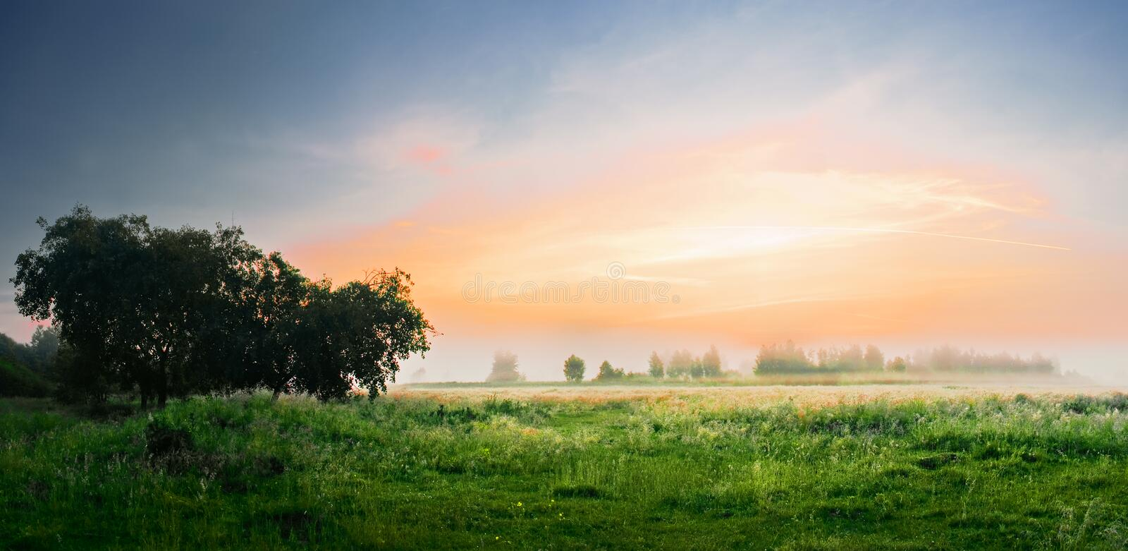 Download Dawn in a field stock image. Image of summertime, countryside - 28702007