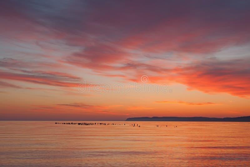 Dawn, het Slapen draagt Baai royalty-vrije stock afbeeldingen