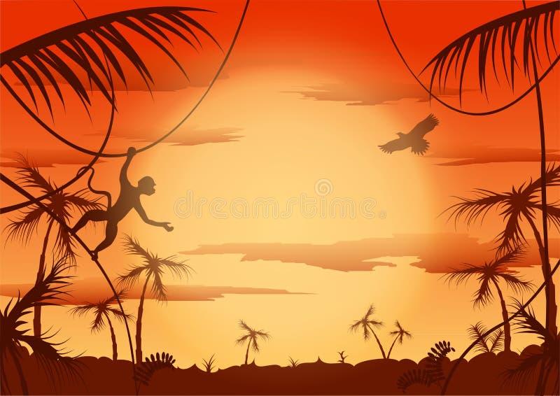 Dawn in jungle, Vector illustration. Dawn in jungle stock illustration