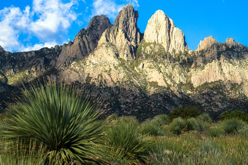 Dawn light at Organ Mountains-Desert Peaks National Monument in New Mexico. Dawn light at Organ Mountains-Desert Peaks National Monument near Las Cruces in stock images