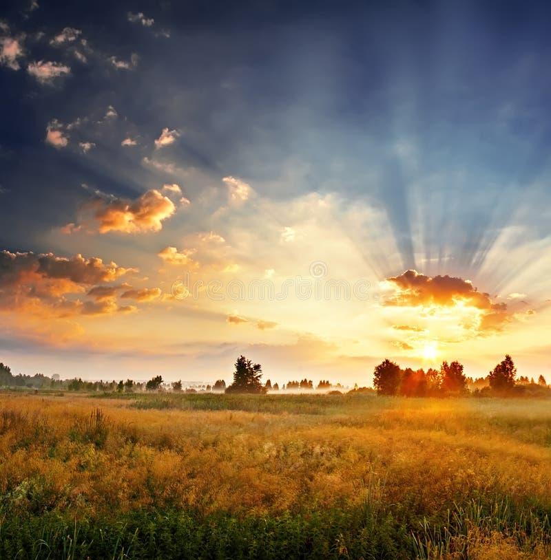 Dawn op een gebied royalty-vrije stock foto
