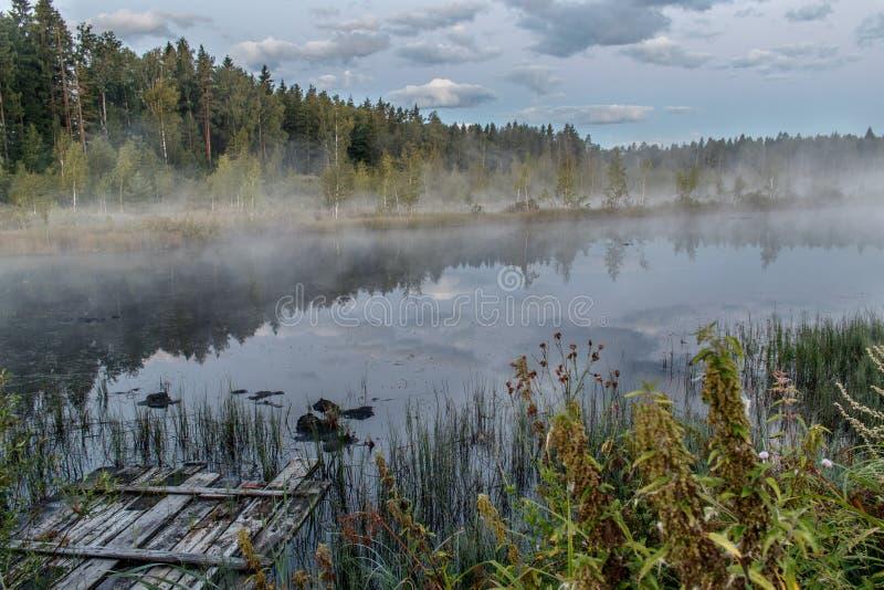 Dawn op het meer met ochtendmist stock afbeelding