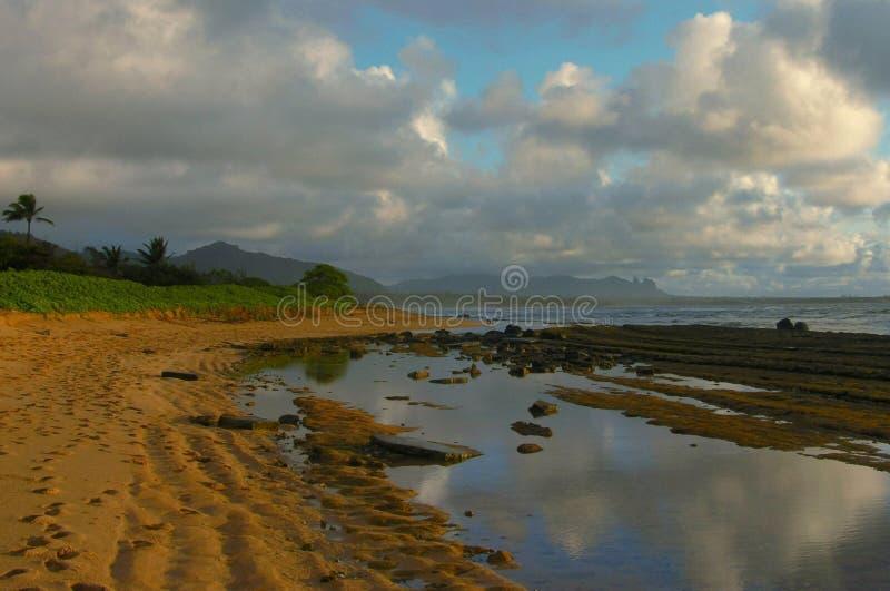 Dawn Reflections, Kauai stock foto
