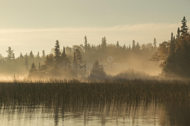 Dawn on the river in Northern Ontario royalty free stock image