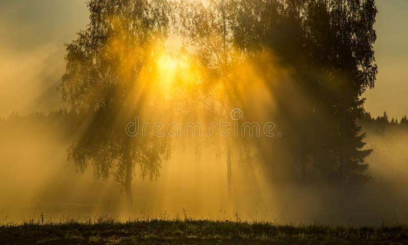 Dawn scenic landscape stock images