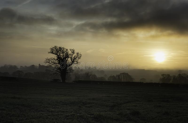 Dawn on Staffordshire countryside. Beautiful sunrise scene on Staffordshire countryside.Dramatic  sky and colourful clouds over field with silhouetted trees stock photography