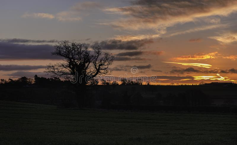 Dawn on Staffordshire countryside. Beautiful sunrise scene on Staffordshire countryside.Dramatic  sky and colourful clouds over field with silhouetted trees royalty free stock photography